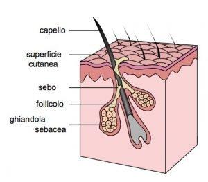 calvizie caduta dei capelli