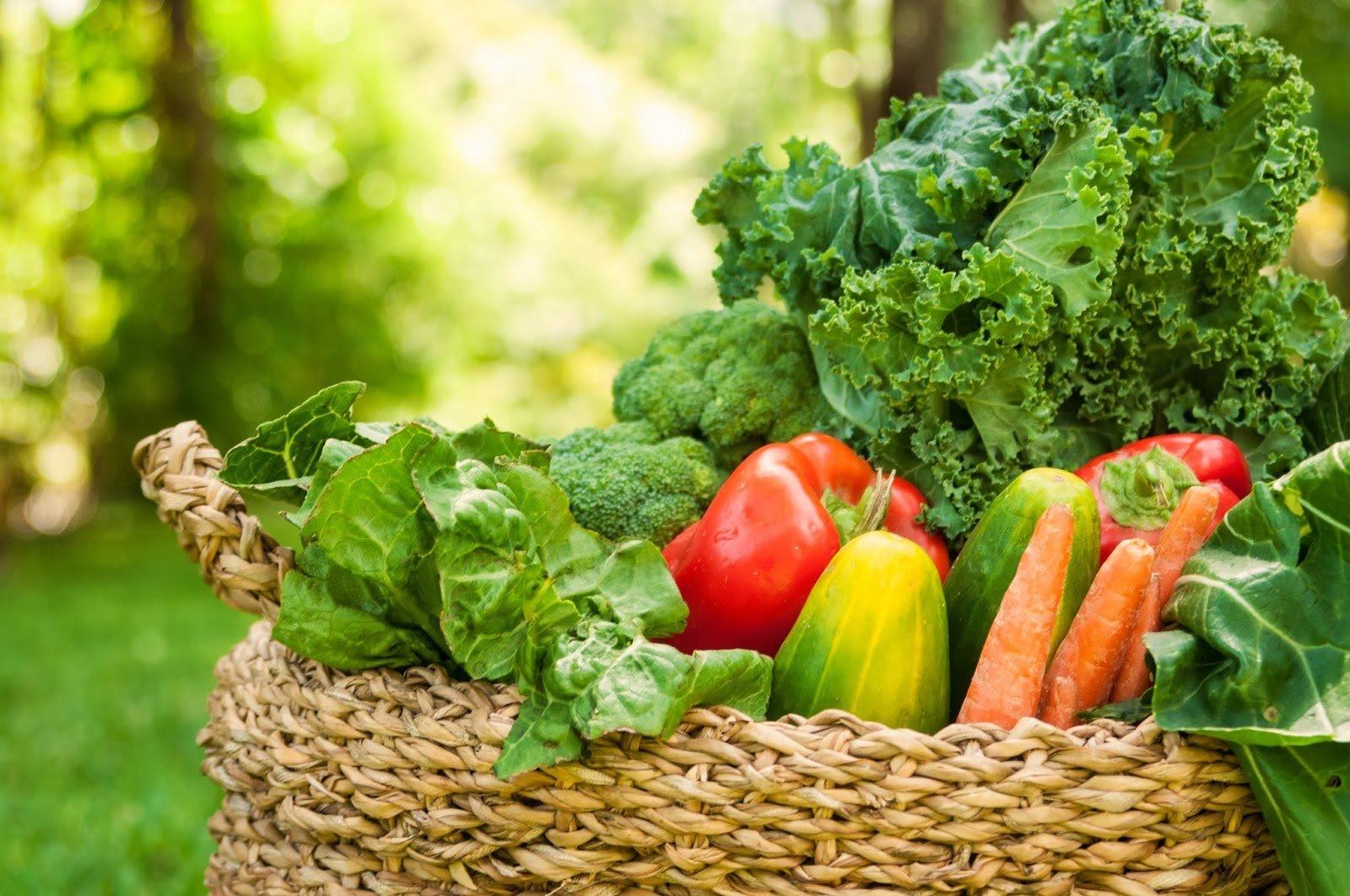 Alimenti e frutta alcalinizzanti